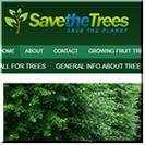 Trees Niche Blog