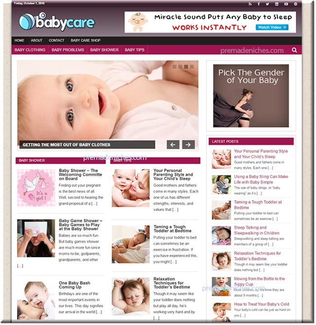 Baby Care Niche Blog