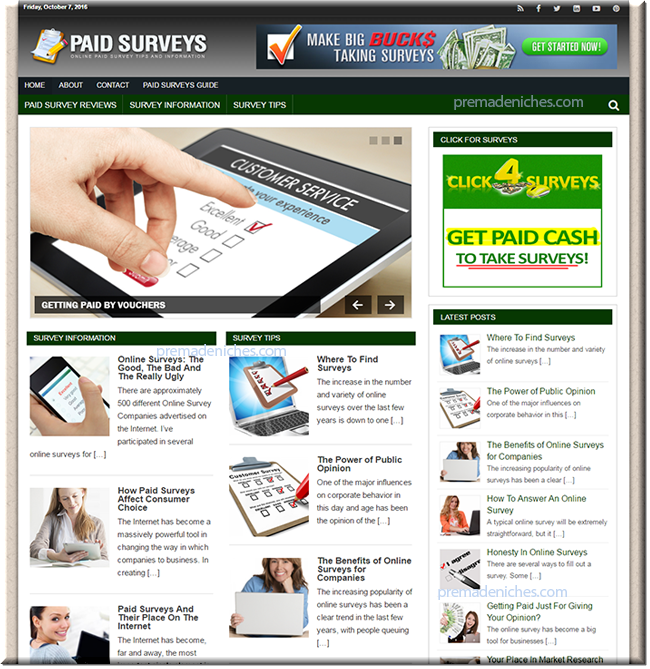 Online Paid Surveys Niche Blog