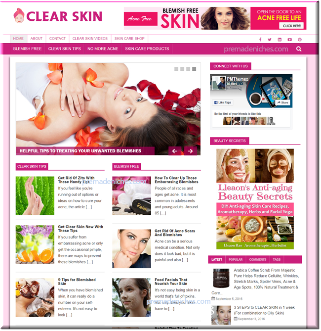 Clear Skin Ready Made Starter Blog