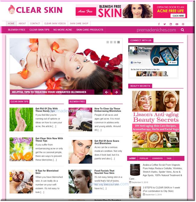 Clear Skin Ready Made Starter Blog