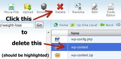 delete wp content