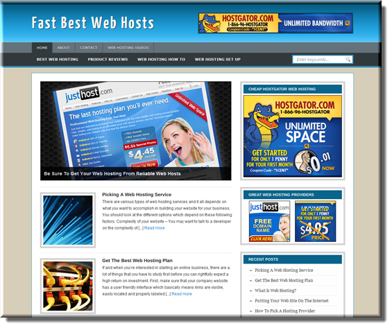 webhosting ready made plr blog