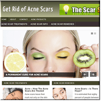 Acne Scars PLR Blog
