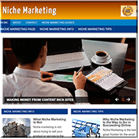 Niche Marketing PLR