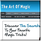 Magic Niche Blog