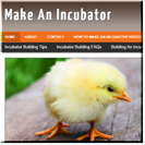 How To Make An Incubator
