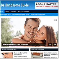 Handsome PLR Blog