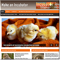 Make An Incubator PLR