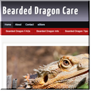 Bearded Dragons PLR