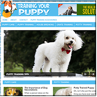Puppy Training Website